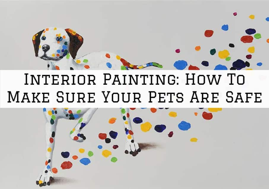 Amador County Interior Painting: How To Make Sure Your Pets Are Safe